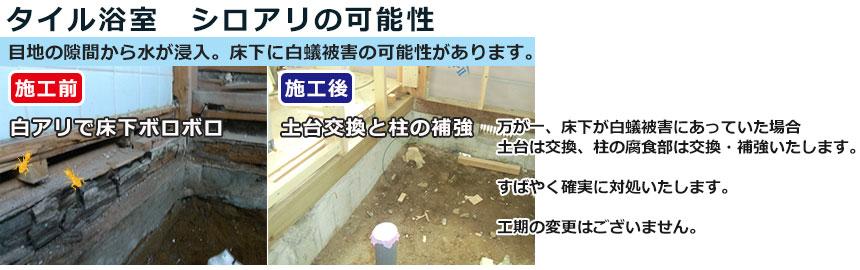 タイル浴室白蟻被害